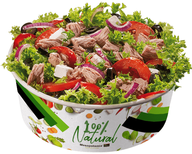 salata-ton-RGB-fara-umbra-min